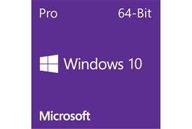 Microsoft Windows 10 Pro 64-bit EN DVD OEM